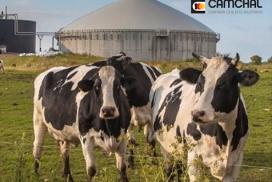 Biogas Curso