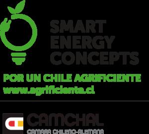 Smart Energy Concepts Logo